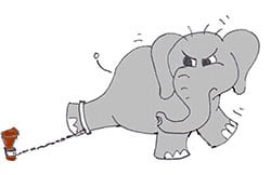 1301-lille-elefant