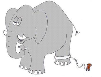 1301-stor-elefant