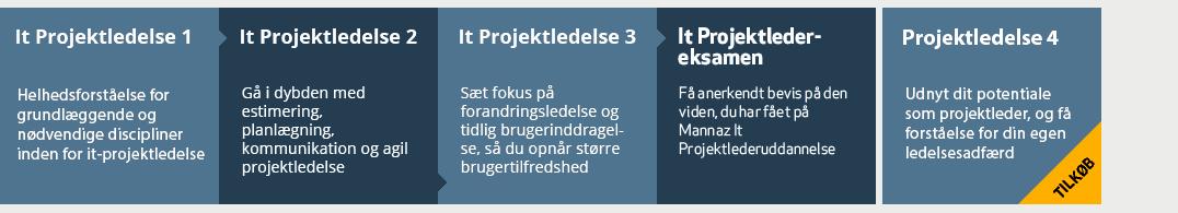 IT projekter