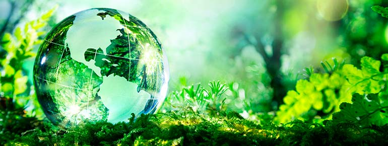 Leading for a sustainable future