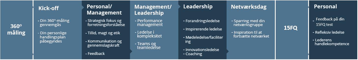 Kursus i Strategi Vækst Lederskab